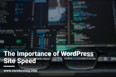The Importance of WordPress Site Speed